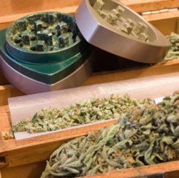plateau de cannabis récréatif et fleurs de cannabis à rouler