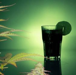 Verre d'alcool et CBD