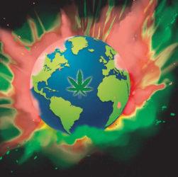 Affiche publicitaire de l'association CIRC LYON dans le cadre de la Marche Mondiale du cannabis