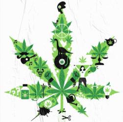 Affiche de la cannaparade 2021 organisée par l'association Cannabis sans frontières.